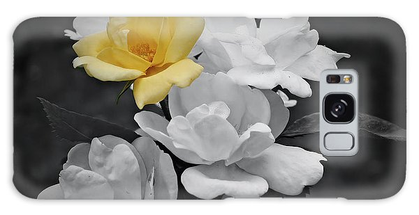 Yellow Rose Cluster Partial Color Galaxy Case