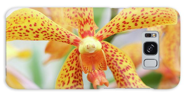Yellow Spotted Spider Orchids Galaxy Case