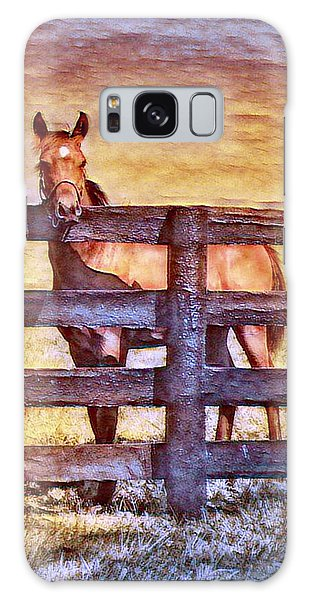 Young Kentucky Thoroughbred Galaxy Case