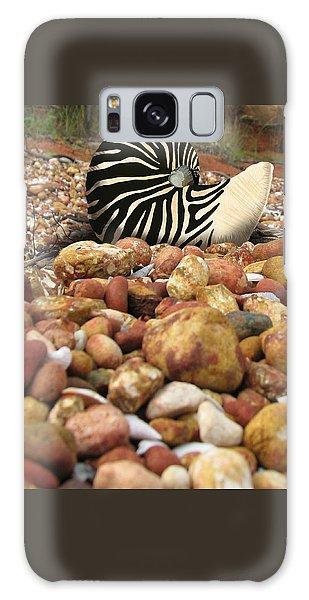 Zebra Nautilus Shell On Bauxite Beach Galaxy Case