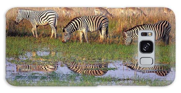 Zebras In Botswana Galaxy Case