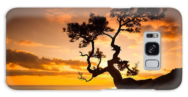 Cloudscape Galaxy Case - Zen Is A Tree On The Cliff Rocks And by Yarygin