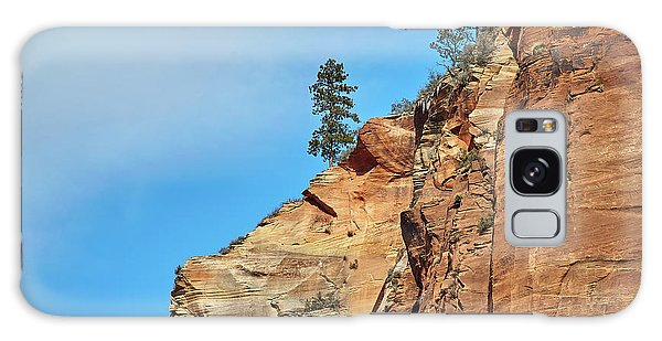 Zion National Park Galaxy Case