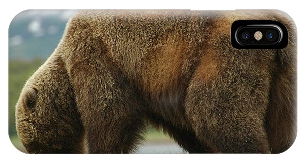Alaska Grizzly IPhone Case
