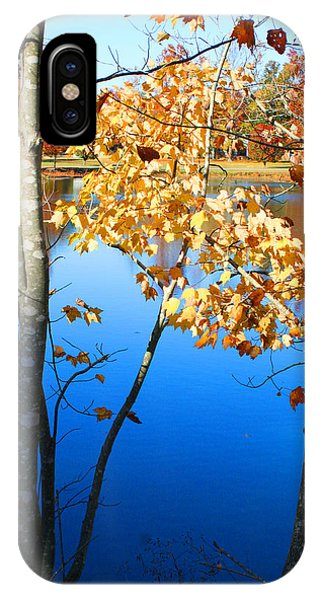 Autumn Trees On The Lake IPhone Case