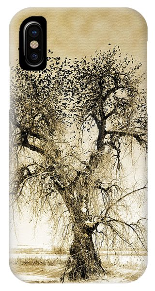 Bird Tree Fine Art  Mono Tone And Textured IPhone Case