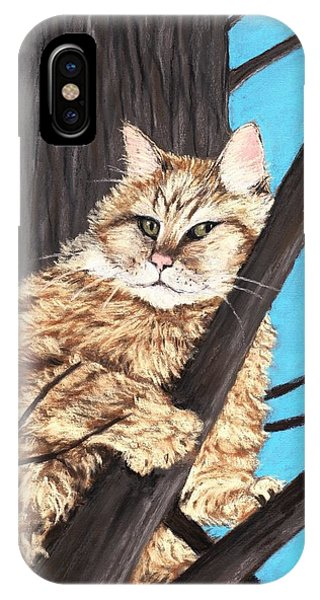 Cat On A Tree IPhone Case