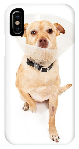 Chihuahua Mix Dog With Cone  IPhone Case