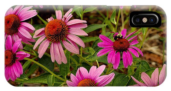 Coneflower Gang  IPhone Case