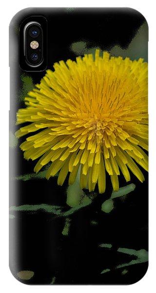 Dandelion  - Glspla529 IPhone Case