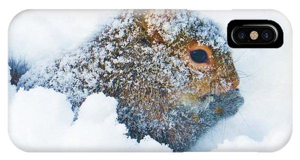 Deep Snow Squirrel IPhone Case