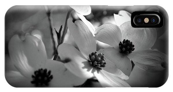Dogwood Blossoms-bk-wh-v IPhone Case