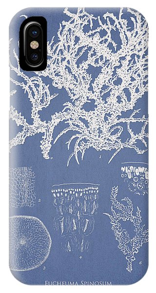 Eucheuma Spinosum IPhone Case
