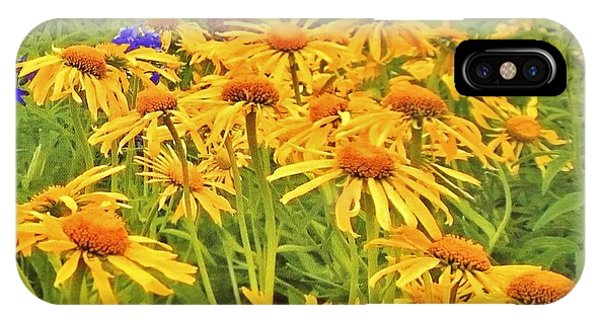 Field Of Fall Flowers IPhone Case