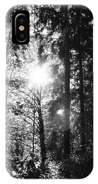 Forest Phone Case by Falko Follert