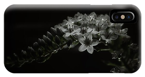 Gooseneck Loosestrife IPhone Case