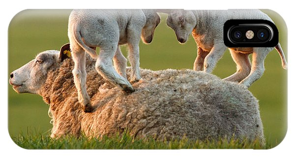 Sheep iPhone X / XS Case -  Leap Sheeping Lambs by Roeselien Raimond