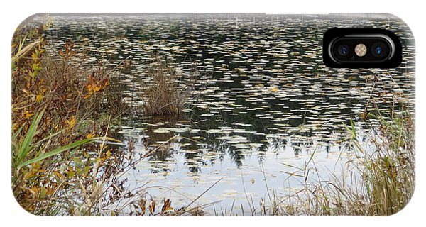 Lily Pads On Whonnock Lake IPhone Case