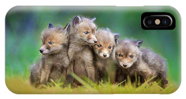 Cute Puppy iPhone Case - ... Little Explorers ... by Pali Gerec