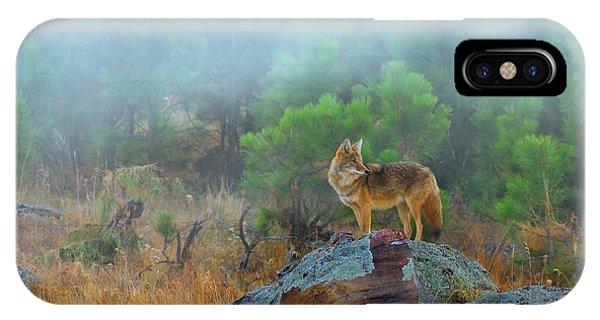 Head And Shoulders iPhone Case - '' Morning Patrol '' by Kadek Susanto