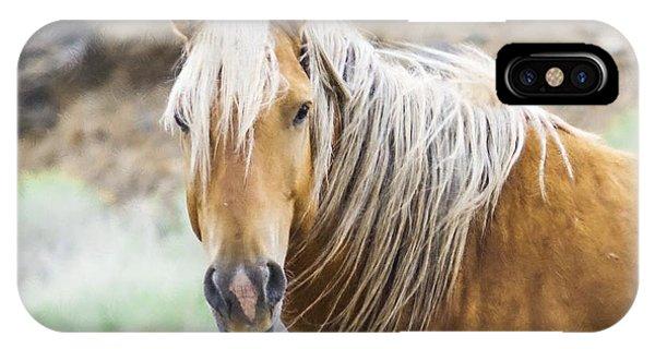 Mustang Palomino  IPhone Case