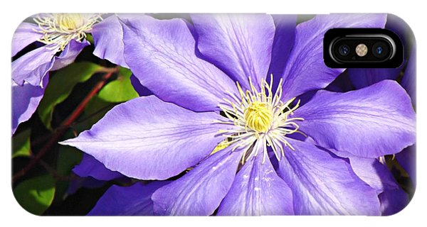 Pretty Purple Clematis IPhone Case