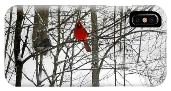 Red Wings In The Woodland Phone Case by Dina  Stillwell