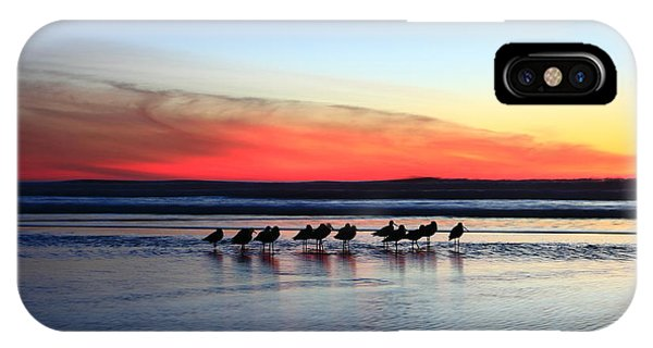 Shorebird Sunset IPhone Case