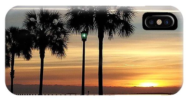 Sunrise Beyond Carolina  Palms IPhone Case