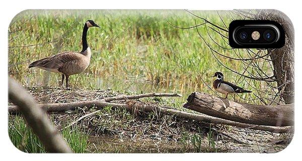 Wildlife Scenery IPhone Case