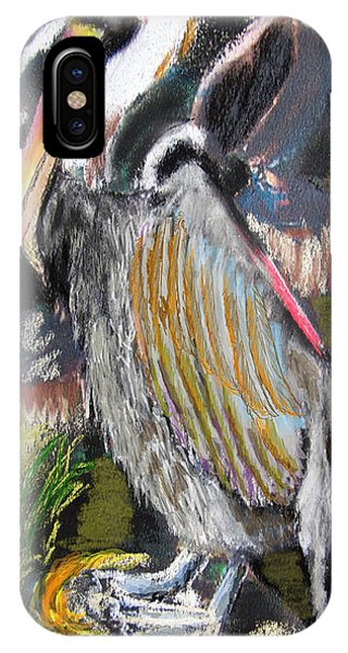 090914 Pelicans IPhone Case