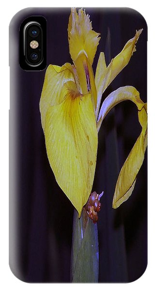 091514 Digital Dry Brush Swamp Lily IPhone Case