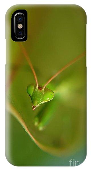 Praying Manta IPhone Case