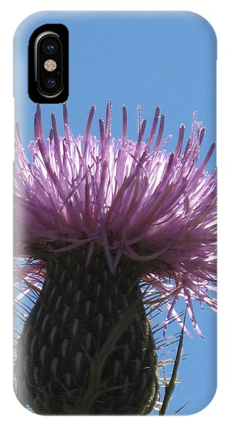A Thistle At Noon IPhone Case