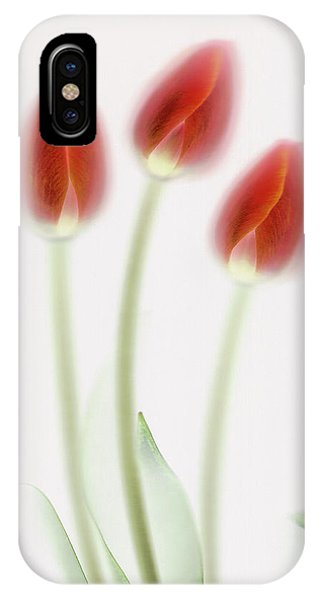 Tulip iPhone Case - Ad Rem by Brian Haslam
