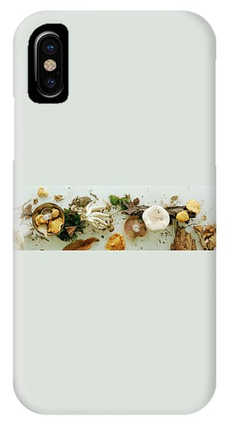 An Assortment Of Mushrooms IPhone Case