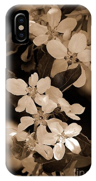 iPhone Case - Apple Blossom by J McCombie