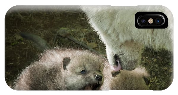 Arctic Wolf Pups IPhone Case