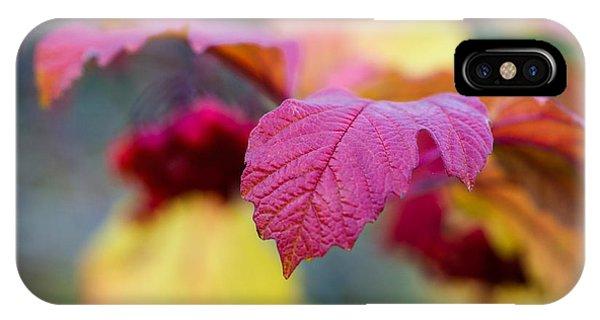 Arrowwood Leaf - Featured 3 IPhone Case