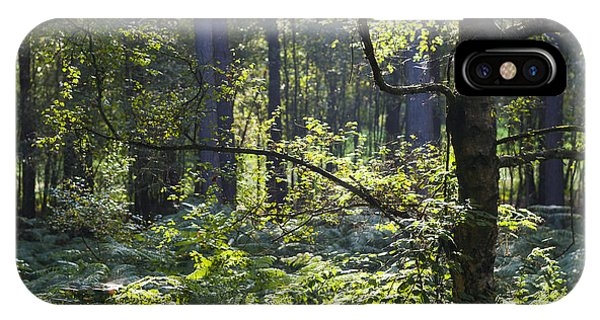 Aspley Woods IPhone Case