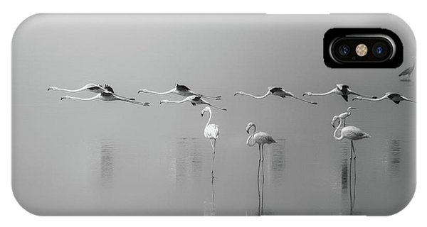 Formation iPhone Case - At A Glance by Ahmed Thabet