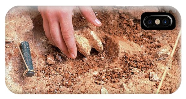 Atapuerca Fossil Excavation Phone Case by Javier Trueba/msf/science Photo Library