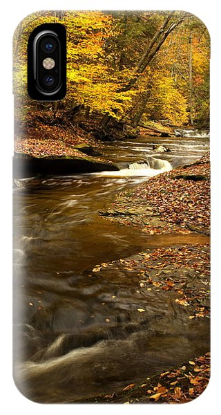 Autumn And Creek IPhone Case