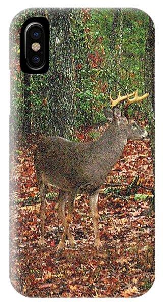 Autumn Buck IPhone Case