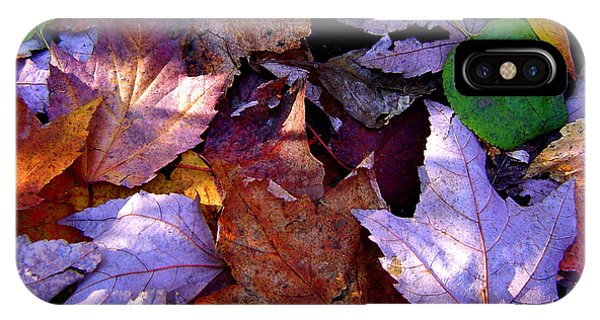 Autumn Groundcover IPhone Case