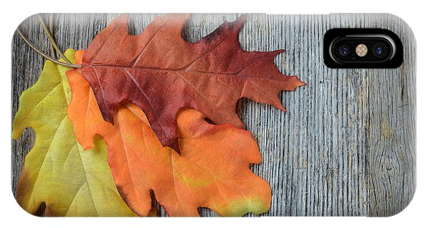 Autumn Leaves On Rustic Wooden Background IPhone Case