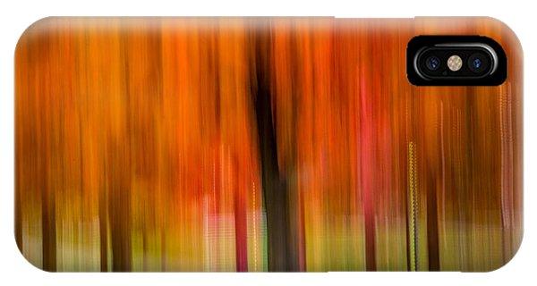 Autumn Park 2 IPhone Case