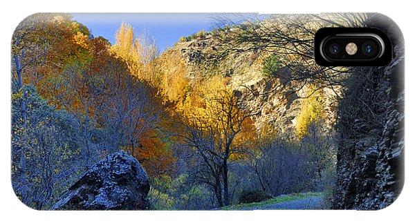 Grenn iPhone Case - Autumn Path by Guido Montanes Castillo