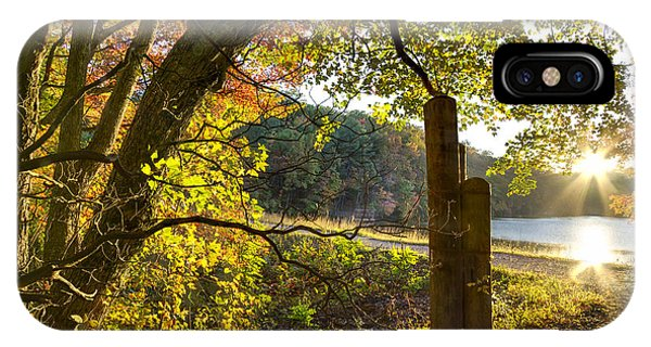 Chilhowee iPhone Case - Autumn Trail by Debra and Dave Vanderlaan
