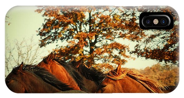 Autumn Wild Horses IPhone Case